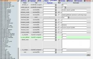 Редактируем запись в базе данных Magento